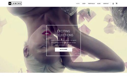 Blanche, eCommerce and portfolio wordpress theme