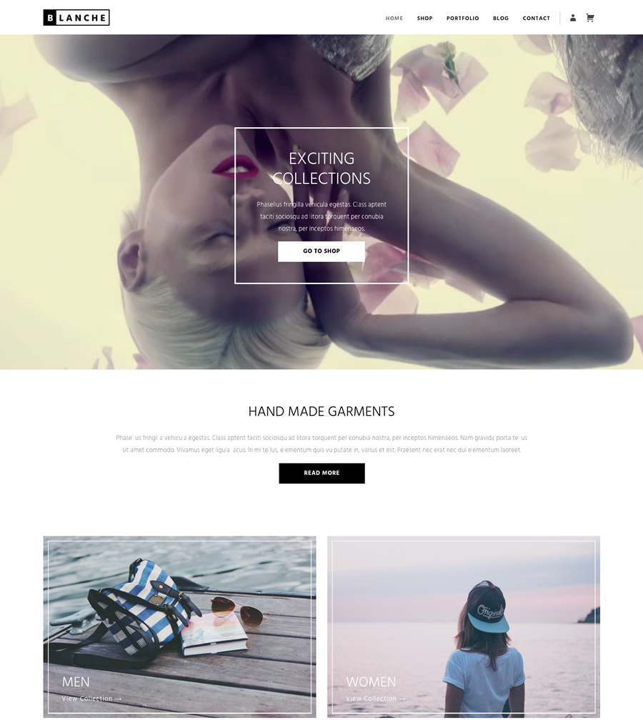 Blanche, eCommerce and portfolio wordpress theme