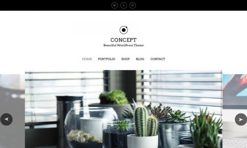 Concept eCommerce and portfolio WordPress theme