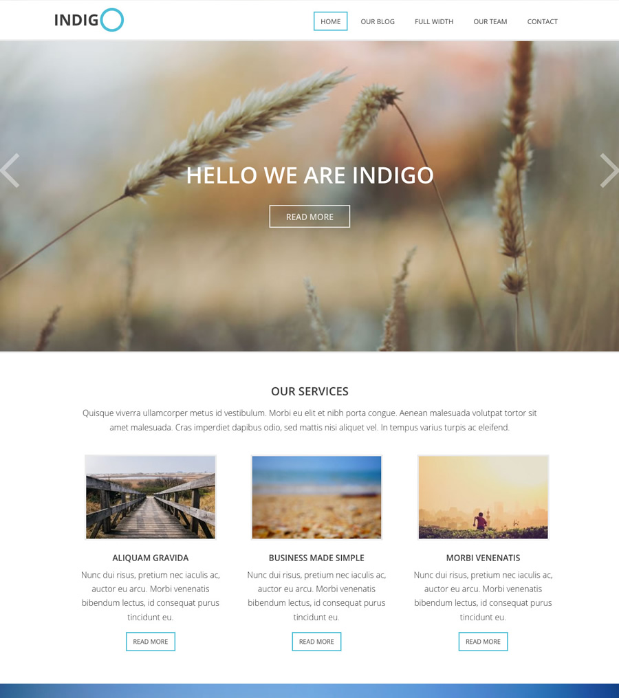 Indigo, business and non-profit WordPress theme