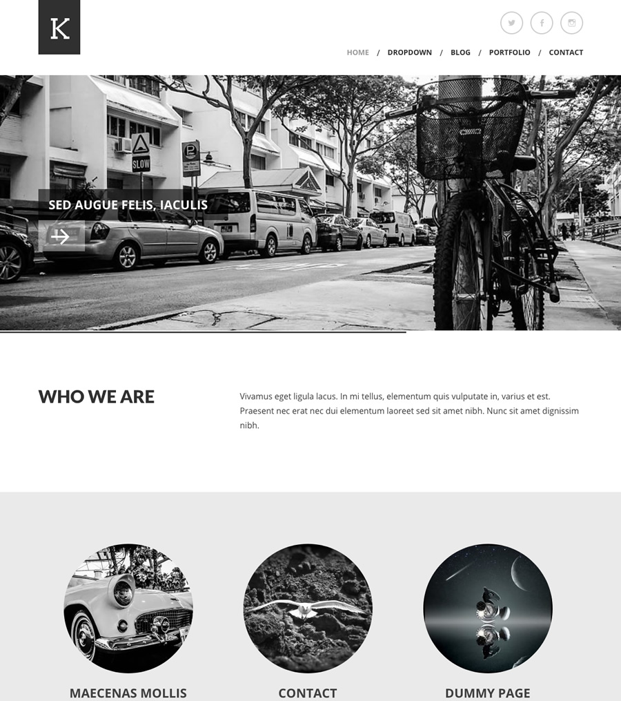 Kimbo, clean business WordPress theme