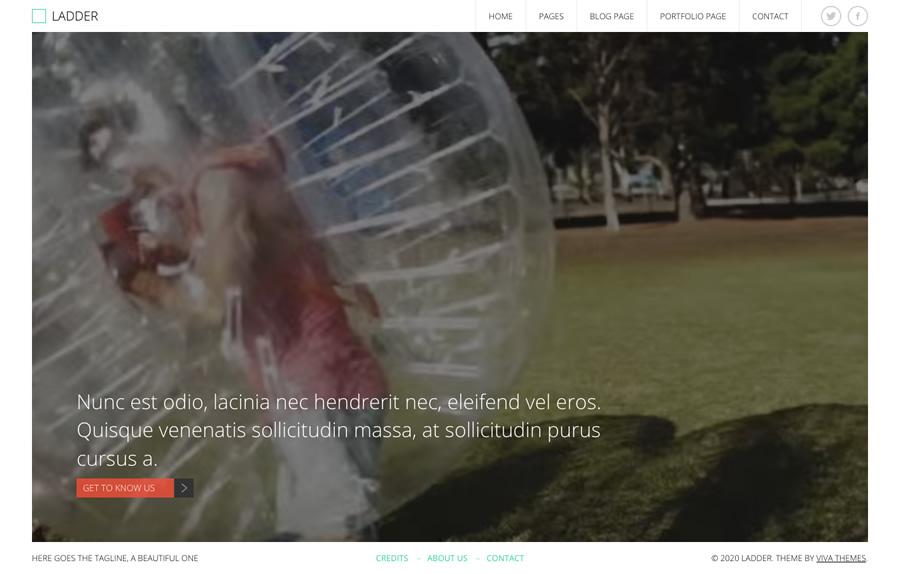 Ladder, full screen video image WordPress theme