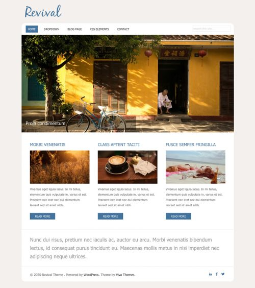 Revival, small business WordPress theme