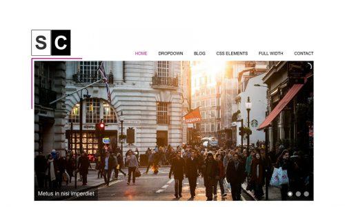 Space Color, minimal business WordPress theme