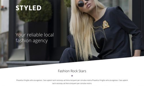 Styled, eCommerce and fashion WordPress theme